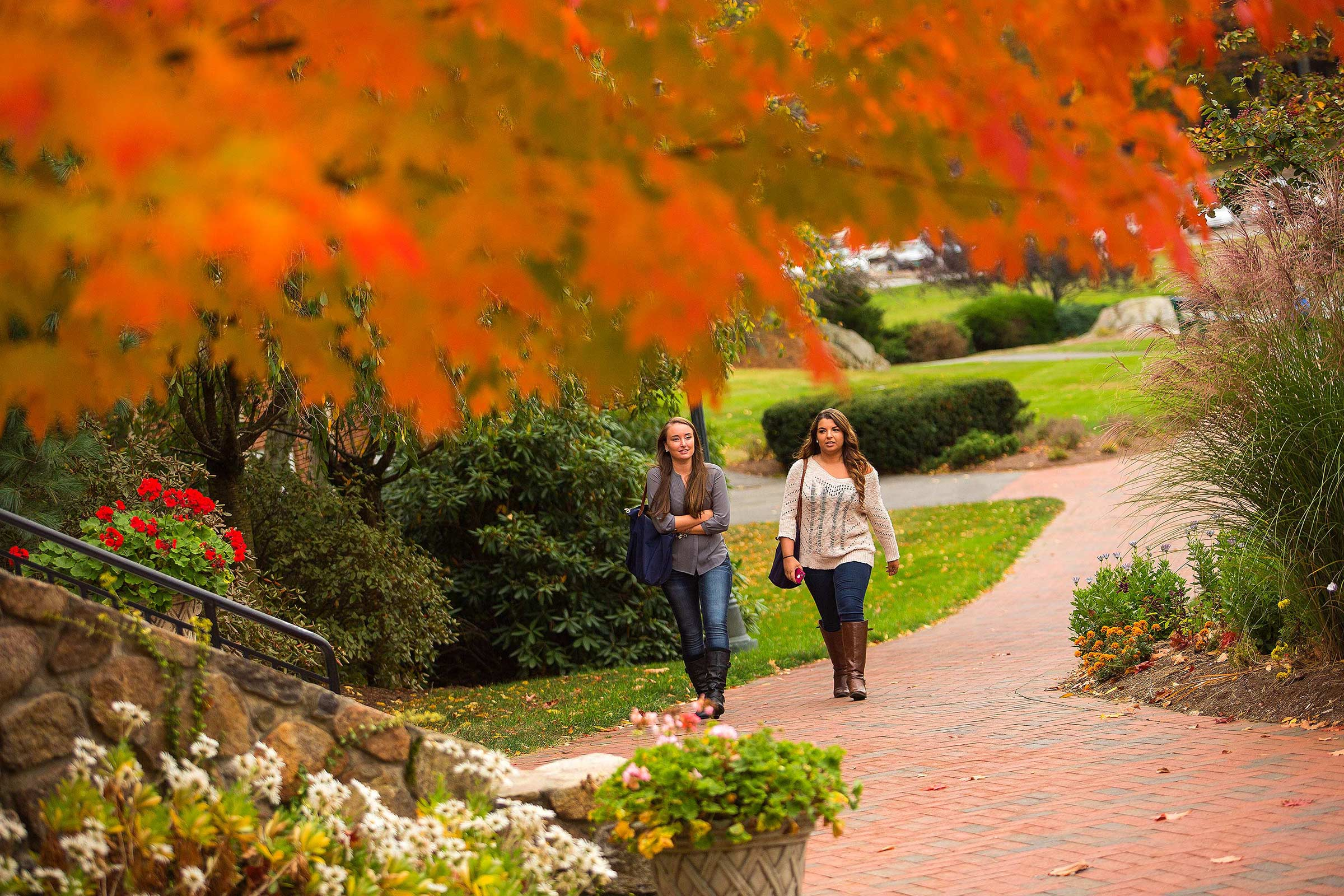 endicott college application essay Endicott college recognizes credit earned at other accredited collegiate institutions, and we encourage transfer applications transfer students should submit all application materials by march 15 for fall admission and december 15 for spring admission.