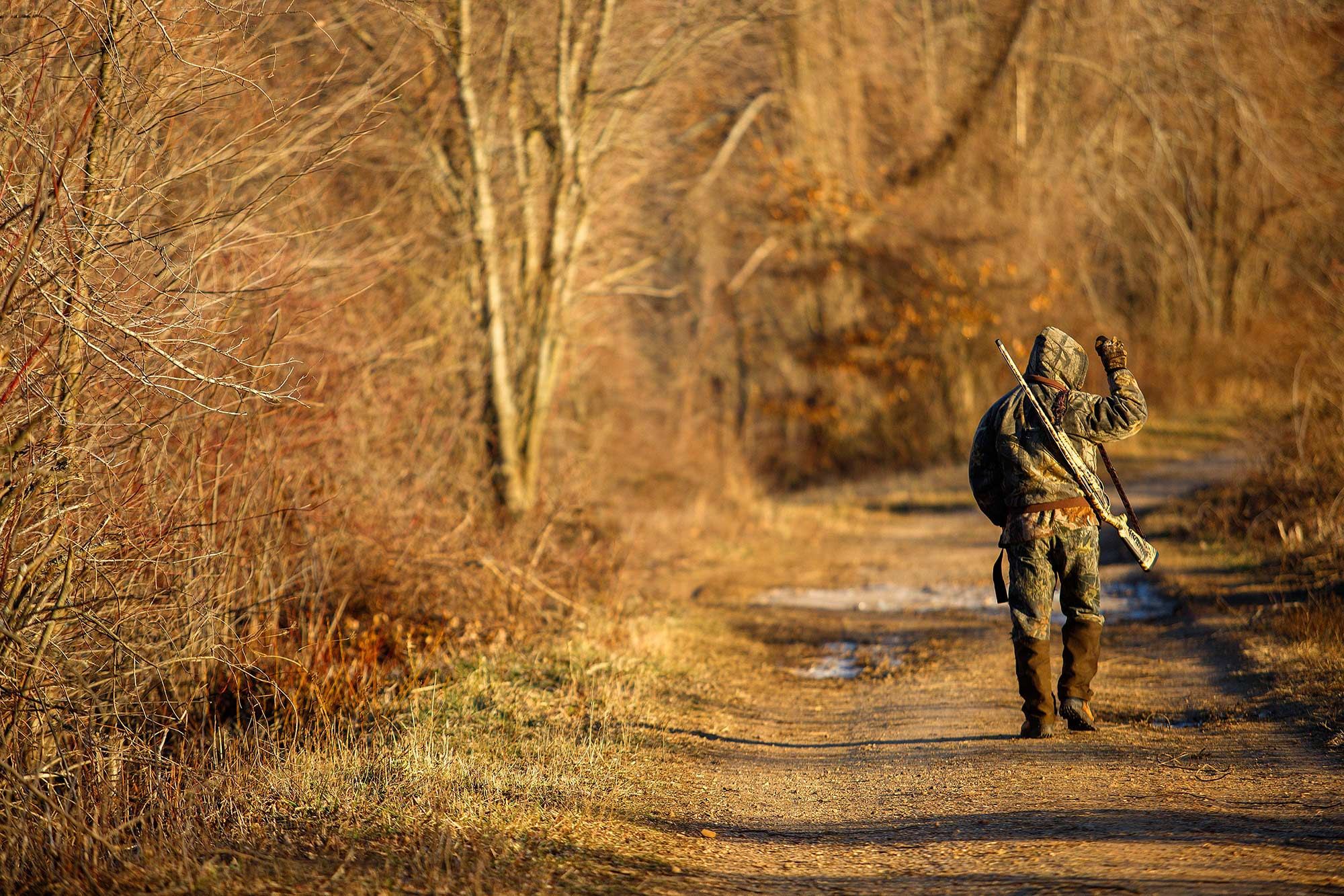 Duck Season, Wabbit Season - 1/1/15